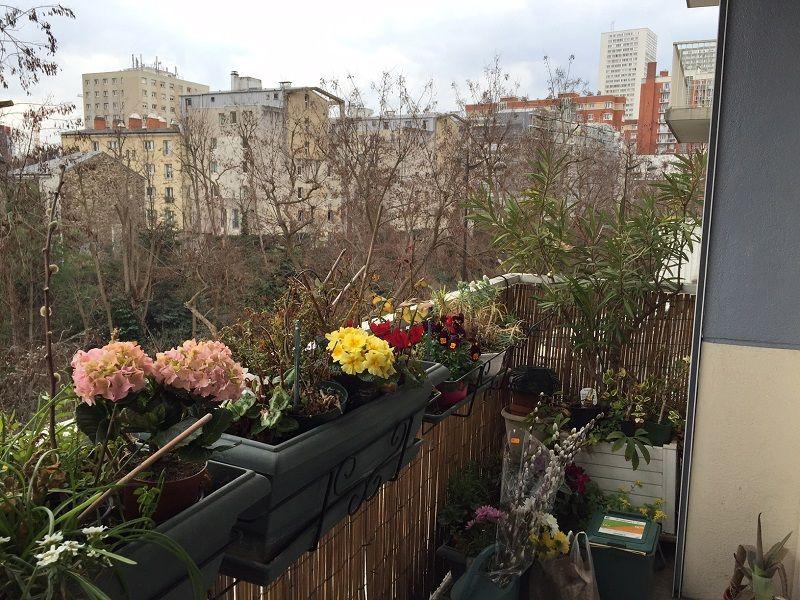 nue propriete 75 paris bouquet 303000 photo 0