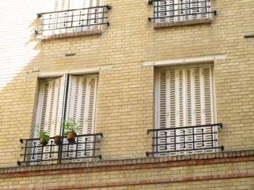 Viager occupé paris - 75015 bouquet 29 000E - ref 190