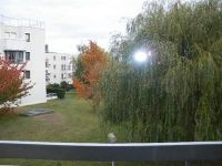 viager occupe 78 le chesnay bouquet 50000 photo 2