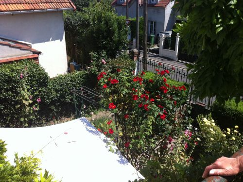 viager occupe 91 savigny sur orge bouquet 45000 photo 0