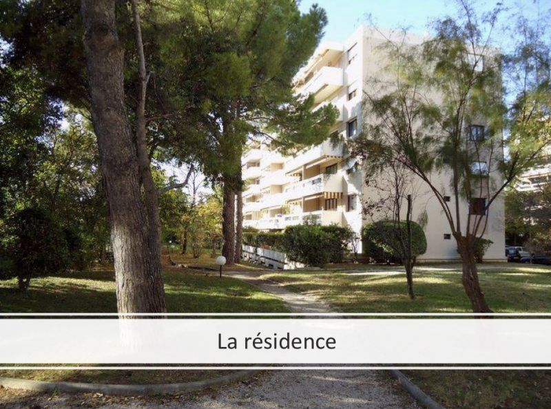 viager occupe 13 marseille bouquet 35000 photo 1