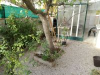 viager occupe 13 martigues bouquet 49000 photo 8