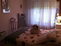 viager occupe 91 viry chatillon bouquet 105000 photo 4