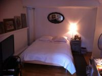 viager occupe 75 paris bouquet 95000 photo 5