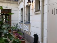 viager occupe 75 paris bouquet 120000 photo 3