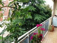viager libre 94 saint maur des fosses bouquet 135000 photo 0